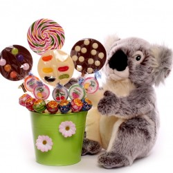 Koala Gift With a Bouquet of Lollies.