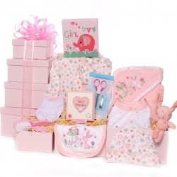 Gift Tower Baby Girl Hamper