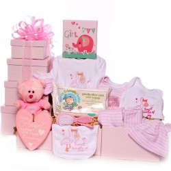 Large baby girl gift tower hamper new baby gift.