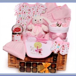 Baby Girl Hampers